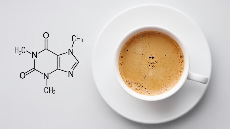 media/image/koffeinK9scLBLuWeUle.jpg